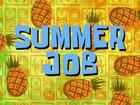 Summer Job Title