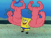 MuscleBob BuffPants 088