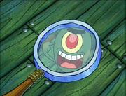Plankton! 033