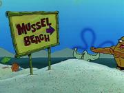 MuscleBob BuffPants 079