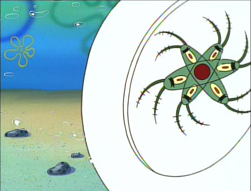 File:Plankton! 038.jpg