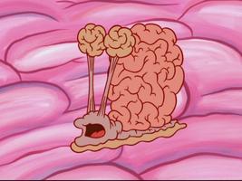 Brain Gary