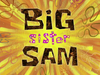 Big Sister Sam title card