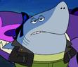 Donnie The Shark