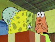 SquidBob TentaclePants 043