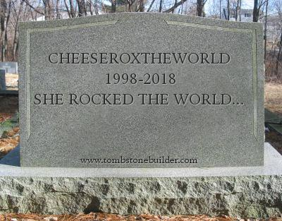 Goodbye-CheeseRoxTheWorld