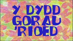 Ydyddgorau'rioed