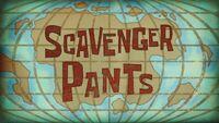 Scavenger pants