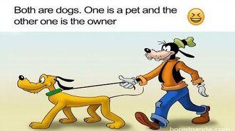 Cartoon Logic...