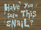 Have You Seen This Snail? title card