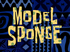 Model Sponge title card