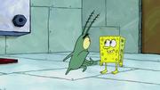 The Incredible Shrinking Sponge 133
