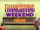 Nickelodeon Thanksgiving Weekends