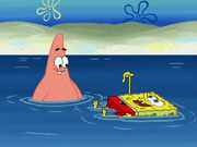SpongeBoard 007