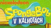 New Czech logo