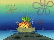 Home Sweet Pineapple 033