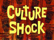 SB 2515-122 CULTURE SHOCK