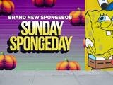 Sunday SpongeDay
