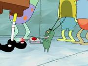 Plankton's Good Eye 195