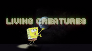 Plankton. A Thank You Would Be Nice. 02