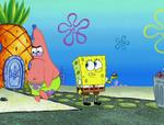 Sentimental Sponge 041