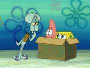 Idiot Box 025