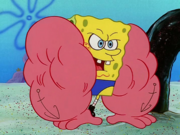 MuscleBob BuffPants 163