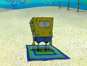 SpongeGuard on Duty 040
