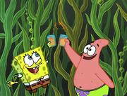 Club SpongeBob 136