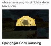When-you-camping-late-at-night-and-you-hear-a-2646689