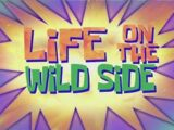 Life on the Wild Side