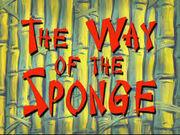 The way of sponge