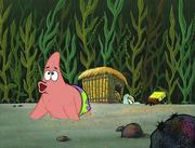 Club SpongeBob 043