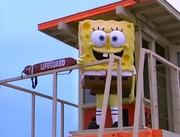 SpongeGuard on Duty 025