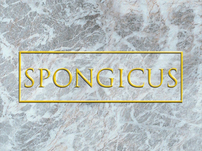 Spongicus Encyclopedia Spongebobia Fandom