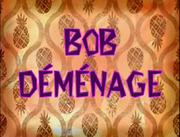 BOB DEMANAGE