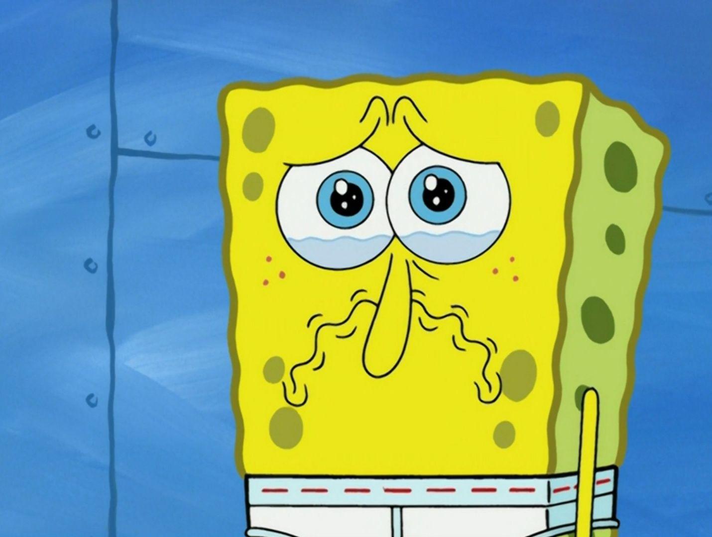 latest?cb=20150222233148 image spongebob's sad nose png encyclopedia spongebobia fandom