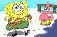 Spongeysummer