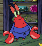 Mr. Krabs tracksuit