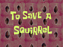 To Save a Squirrel title card