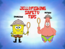 2 - Jellyfishing Safety Tips