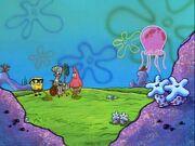 Jellyfishing 089