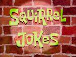 Squirrel Jokes