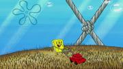 The Incredible Shrinking Sponge 206