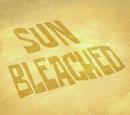 Sun Bleached (transcript)