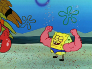 MuscleBob BuffPants 087