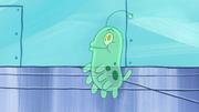 Plankton's Pet 078