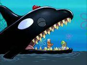 SpongeGuard on Duty 136