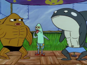 MuscleBob BuffPants 100