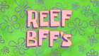 Reef BFF's 002